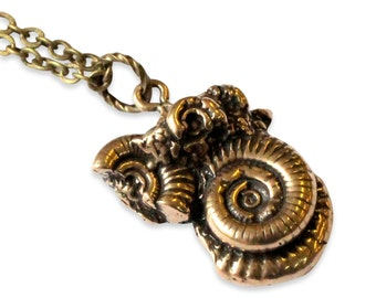 Two for One Sale....Ammonites Fossil Necklace 109