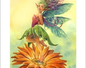 A Practical Guide to Faeries 8.5 x 11 Print