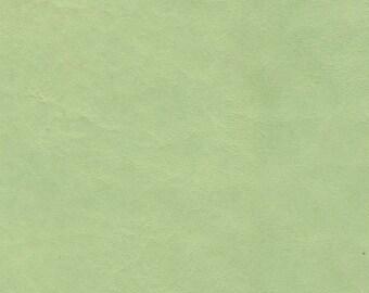 5269 -Genuine Lambskin Leather Fabric/cut from hide/Pale Pastel Mint Green/ Below Regarding Lambskin Nos.  5261-5296
