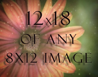 12x18 Photograph of any 8x12 Image