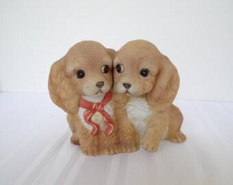 Puppy, Homeco Spaniel Puppies, Dog