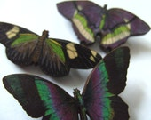 Set of three, wooden butterfly brooches, wood, black, green and purple, by NewellsJewels on etsy