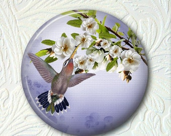 Pocket Mirror  Hummingbird  Buy 3 get 1 Free  386
