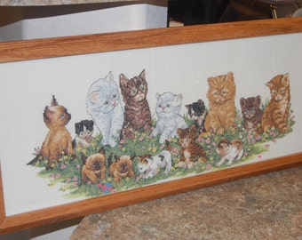 COMPLETED AND FRAMED - A Row of kittens