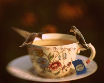 Hummingbird Photograph, Fine Art Photography, Vintage Tea Cup, Bird Photo, print, golden hour, flowers, tea, Surreal, Birds, Nature, Garden