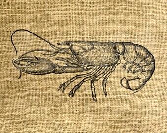 INSTANT DOWNLOAD Lobster Vintage Illustration - Download and Print Image Transfer - Digital Sheet by Room29 - Sheet no. 787