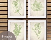 Italian Provincial Herb Garden Collection - Set of 4 - Art Prints (Featured in White Stone and Spring Green)