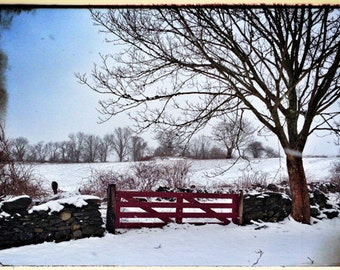 Metallic Photograph, Berg's Farm Gate, Tiverton, Rhode Island, Fine Art gifts for woman, men, man