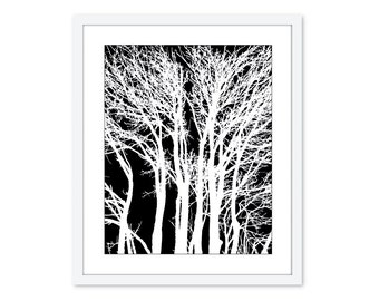 Modern Trees - Digital Print - Branches- Home Decor - Black and White  - Woodland - Original - Under 20