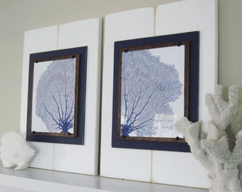 Set of Large Framed Sea Fan Prints 14x21 White and Navy