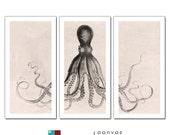 Octopus Lord Bodner Triptych on Premium Archival Matte Paper - 22x44 Panels