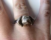 Tibetan spaniel dog ring