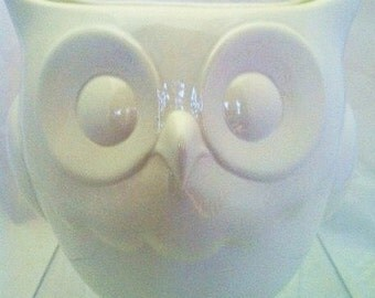 Ceramic Owl Planter - Ceramic Owl Flower Pot - Owl Container Utensil Holder