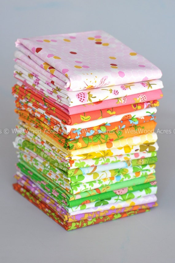 PRE-ORDER Briar Rose with Solids 32 Fat Quarter Bundle by Heather Ross for Windham Fabrics COMPLETE
