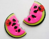Button Twin Watermelon with Ladybug handmade polymer clay buttons ( 2 )