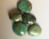 Blue Diamond turquoise cabochons (Lot 8)