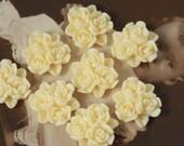 20pcs  Wholesale Beautiful Colorful Rose Flower Resin Cabochon  --15mm(CAB-BP -15)