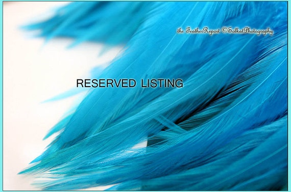 Reserved for Shannon ONLY 30PLUS Pink Feather Hair Extension