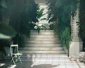 Parisian old greenhouse - 35mm film photography - A4 / 11.7 x 8.3 inches - Paris Art Print - Home decor - Spring