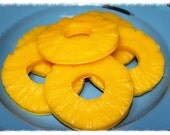 HAWAIIAN SUNTAN Scented Pineapple Slice Wax Tarts Melts Embeds Bowl Fillers-Highly Scented