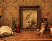 1:12 Scale Framed Owl Print