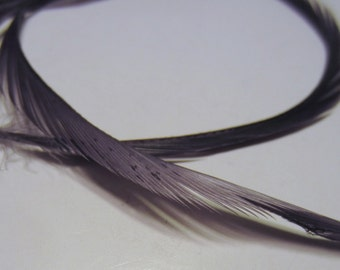 Feathers Goose Biots 4 Dyed slate gray GBD38 craft feathers fly tying feathers
