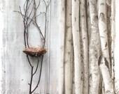 Nest In Branches - DIY Wedding Supplies - Woodland Wedding Supply - Assemblage Art - Twigs Forest Bird Nature Birch Tree
