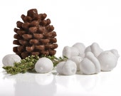 Pine cone & Acorn soaps- Heart Of The Forest Soap Set - woodland decor