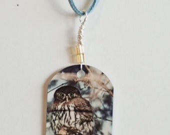 metal photo pendant, northern pygmy owl, owl photo, animal photography