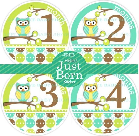 Baby Monthly  Stickers  PLUS Just Born (1st Year OWLS) green.turquoise.brown.yellow. Bodysuit, Milestone, Photo prop, Shower gift