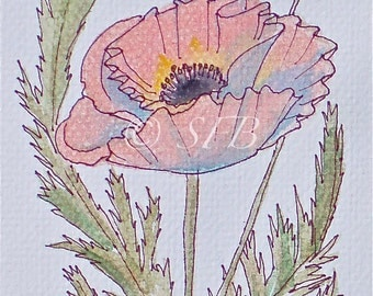 Coral Poppy Art Print from Original Watercolor Painting