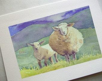 Fat Sheep - Card