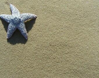 Tan Sand (1 lb bag)