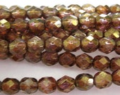 Czech Glass Faceted Round Fire Polish Beads size 6mm Trans Gold Smokey Topaz (25)