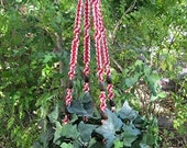 Peppermint White Red 52 1/2 Inch Brown Beads Macrame Plant Hanger