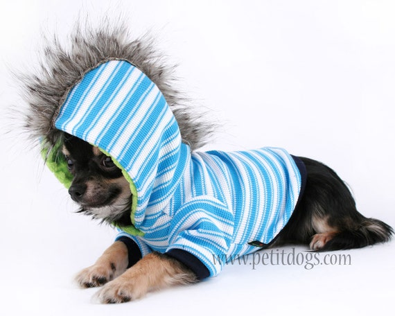 Boy Small Dog Clothes Boy Dog Clothes xs Mohawk Blue