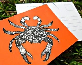 Orange Crab Animal Art Postcards