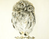 Owl with monocle  - original painting