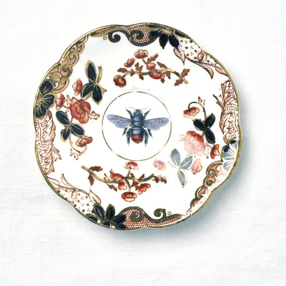 Fly on vintage china saucer