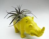 Neon Yellow Rhinoceros Planter - Mini Modern Art Air Plant Container