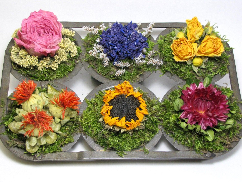 dried flower arrangement vintage muffin tin arrangement. Black Bedroom Furniture Sets. Home Design Ideas