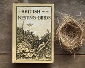 1910s bird book British Nesting Birds - EAGERforWORD