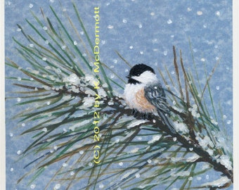 Blue Snow Pine Chickadee - Bird 2 - Brushstroke Enhanced 8 X 10 Inch PRINT