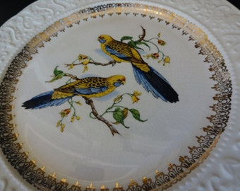 Vintage English Ironstone Decorative Plate, Gold Detail with Parakeets