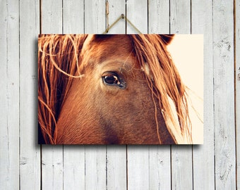 horse stare 16x24 canvas print horse eyes horse decor red horse - Horse Decor