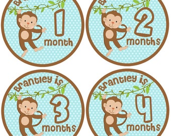 CUSTOM Monthly Baby Boy Stickers Baby Month Stickers, Monthly Bodysuit Sticker Monthly Stickers Monkeys (Kyler)