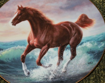 Surf Dancer by Chuck DeHaan from The Unbridled Spirit plate collection by The Hamilton Collection