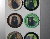 Black Bear bottlecap magnets (set of 6)