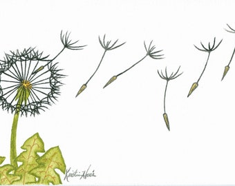 """DANDELIONS I - Watercolor Fine Art Print, 5x7"""" (matted 8x10""""), ready to frame"""