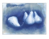 ACEO Cyanotype Blue and White Still Life Photograph of Four Pears, Miniature Original Art 2.5 x 3.5 inches